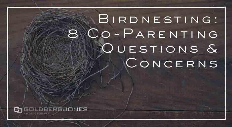 what is birdnesting