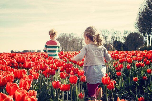 child custody modification