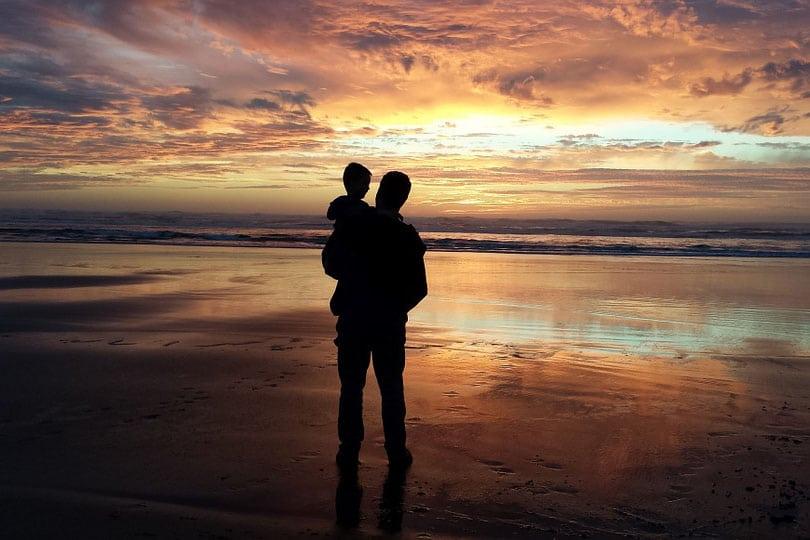 parenting plan san diego