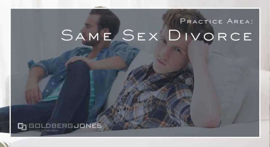 LGBT family law