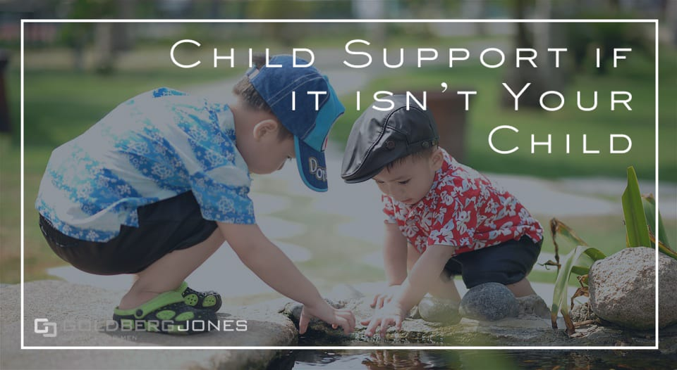 child support non-biological child
