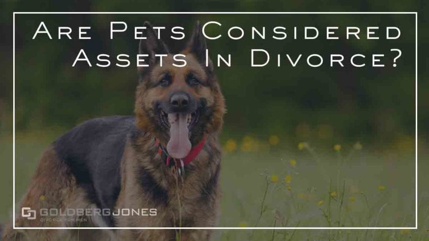 are pets assets in divorce