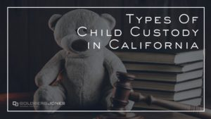 what are the custody types in CA